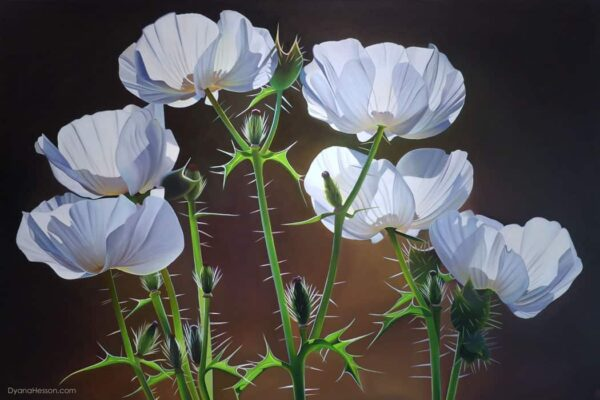 Prickly Poppies by Dyanan Hesson